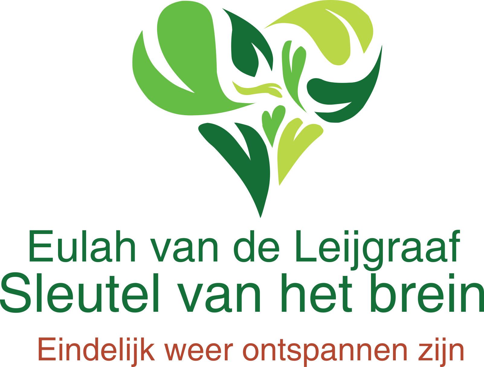 Sleutel van het brein /MatriXcoach Zeeland     Eulah van de Leijgraaf